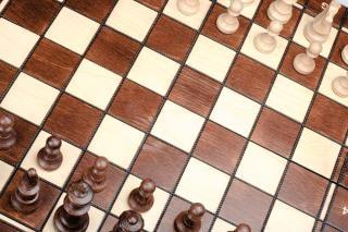 La competencia de ajedrez brown