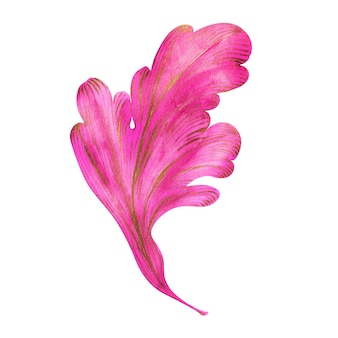 Composición de acuarela hojas rosadas y doradas con rizos de una planta de fantasía