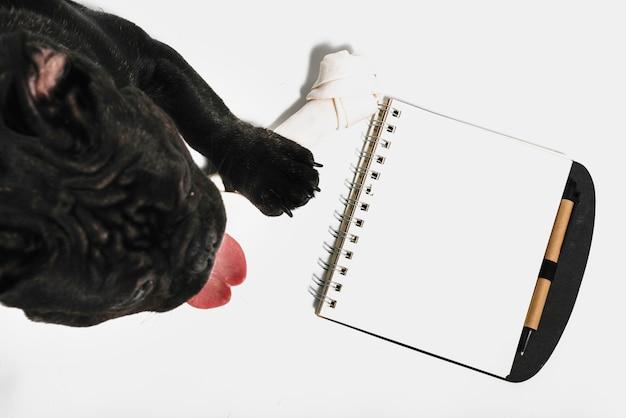 Composición adorable de bulldog con libreta