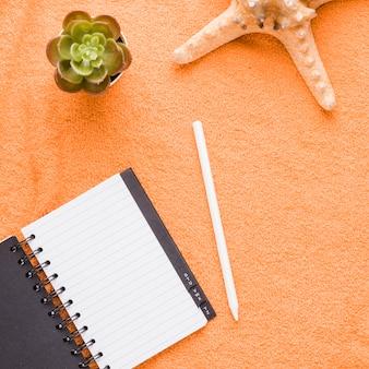 Composición de cuaderno lápiz planta y estrellas de mar