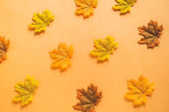 Composición de hojas secas de arce