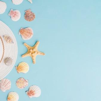 Composición de verano con conchas a la izquierda