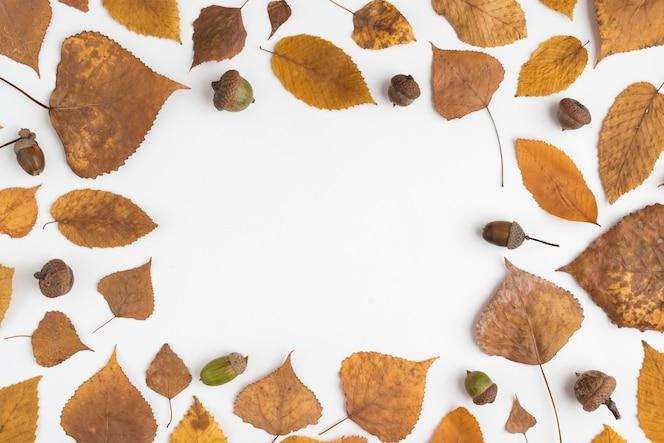 Composición del marco con hojas caídas y bellotas