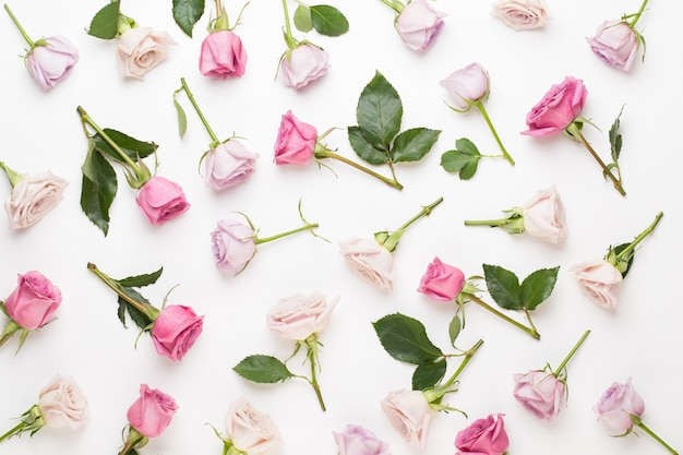 Composición del día de san valentín de flores. marco de rosa rosa sobre fondo gris. endecha plana, vista superior, espacio de copia.