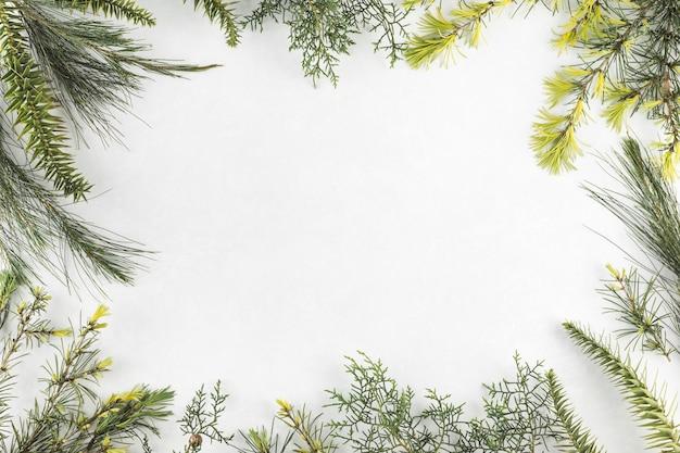 Composición de diferentes ramas.