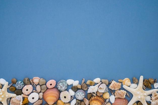 Composición con elementos marinos y espacio en blanco