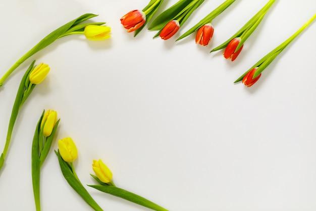 Composición encantadora de flores de tulipán