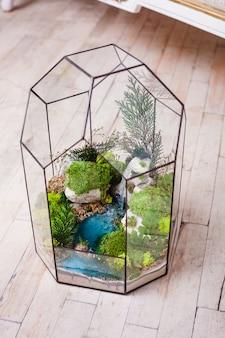 Composición del florario de suculentas, piedra, arena y vidrio, elemento del interior, decoración del hogar, terario de vidrio
