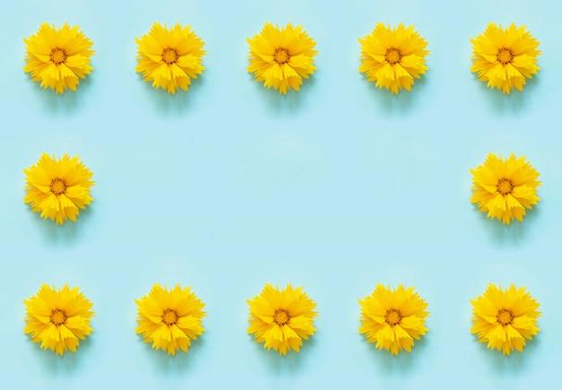 Composición de flores. borde del marco floral de flores amarillas coreopsis en la pared azul.