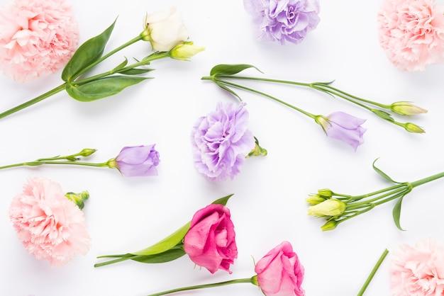 Composición de flores de color pálido y brillante