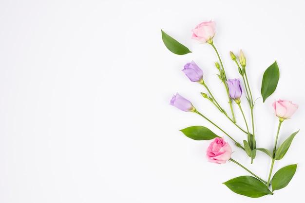 Composición de flores en colores pastel