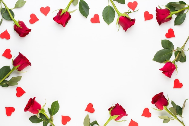 Composición de flores. marco de rosa roja sobre fondo blanco. endecha plana, vista superior, espacio de copia.