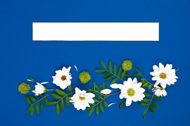 Composición de flores de primavera. tarjeta de papel de maqueta con espacio de copia. marco de flores blancas en un espacio azul.