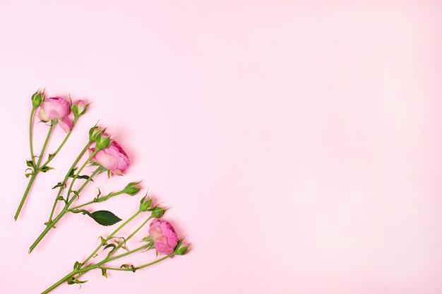 Composición de flores rosa rosa flores. lay flat, espacio de copia