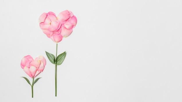 Composición de flores rosadas en forma de corazones.