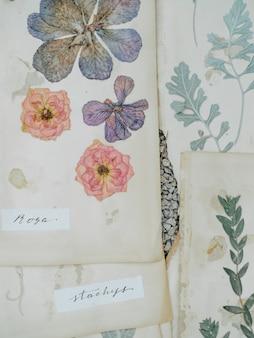La composición con las flores y seca las plantas en los cuadernos en la tabla cerca ilustraciones en el libro