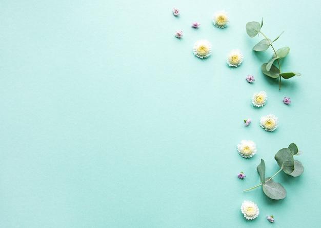 Composición de flores sobre fondo verde