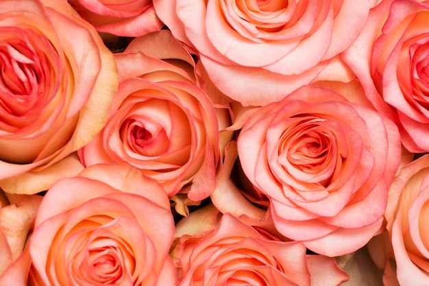 Composición de fondo de flores hermosas