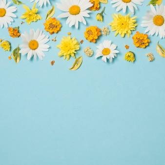 Composición de hermosas flores brillantes.