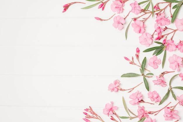 Composición de hermosas flores rosas y plantas