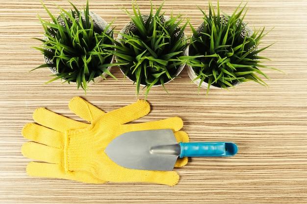 Composición de herramientas de jardín y plantas.