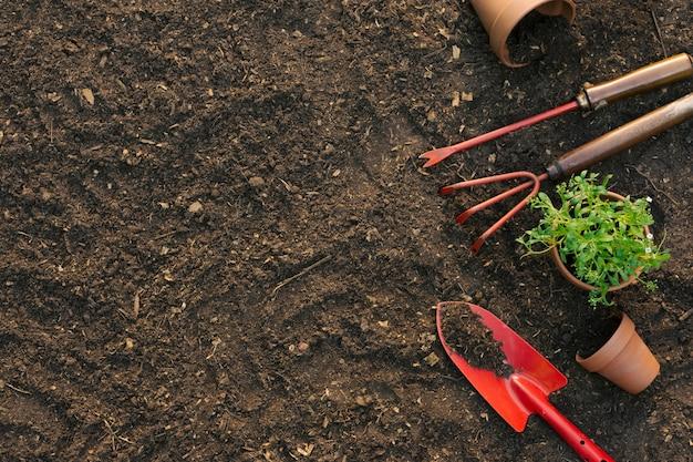 Composición de herramientas para jardinería en suelo.