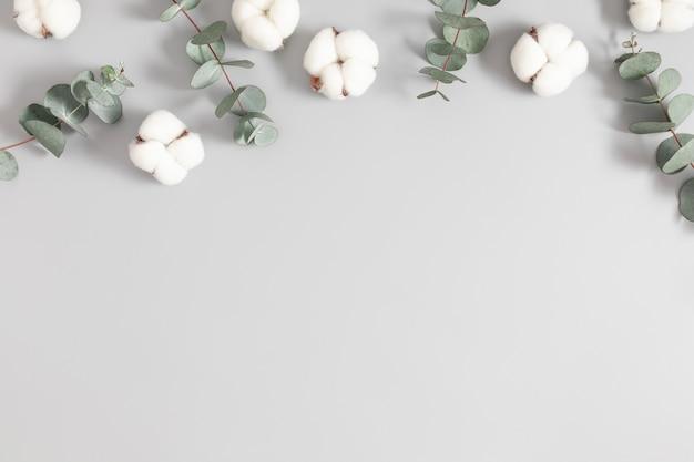 Composición de hojas de eucalipto y flores de algodón sobre un fondo gris