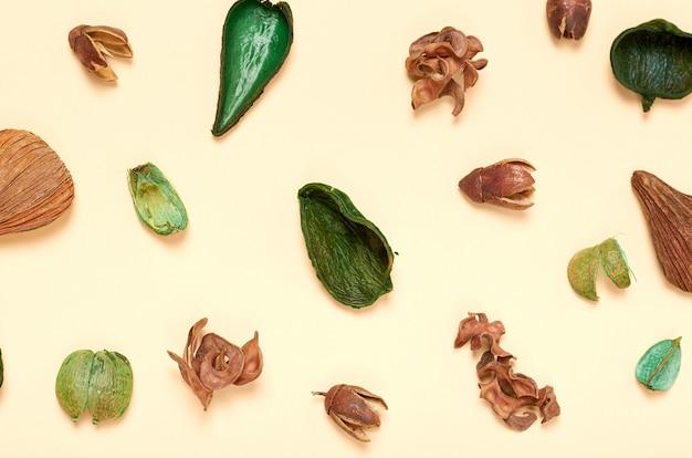 Composición de las hojas. fondo del concepto de naturaleza. plano y vista superior photo