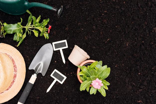 Composición de jardinería vista superior con espacio de copia