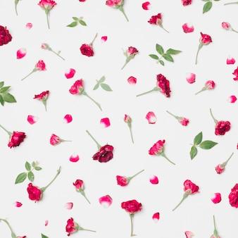 Composición de maravillosas flores rojas, pétalos y hojas verdes.