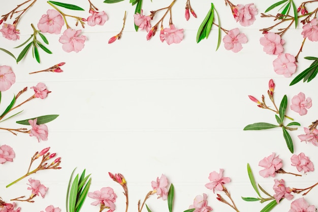 Composición de maravillosas flores rosas y plantas