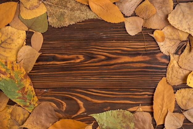 Composición del marco de las hojas caídas del otoño