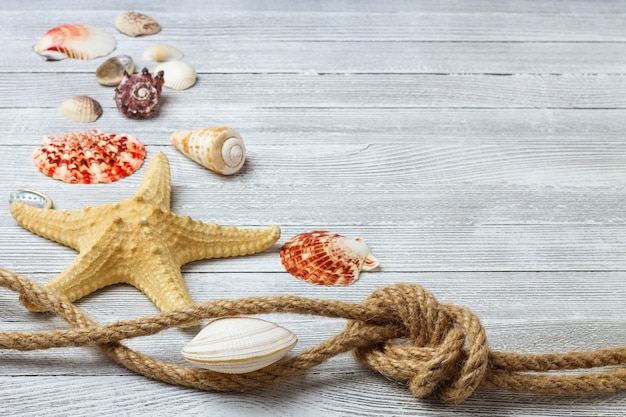 Composición marina con conchas, estrellas de mar y cuerda sobre una mesa de madera clara
