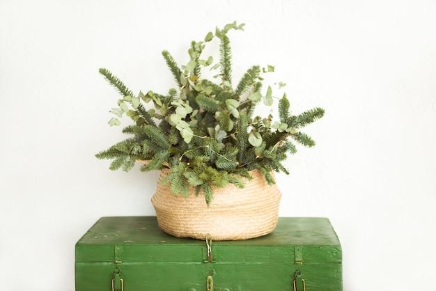 Composición navideña. ramo de ramas de coníferas sobre fondo gris pastel. navidad, invierno, año nuevo concepto