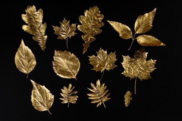 Composición otoñal de diferentes hojas doradas