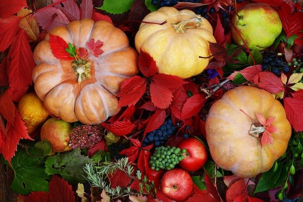 Composición otoñal de manzanas de calabaza de uvas y hermosas hojas