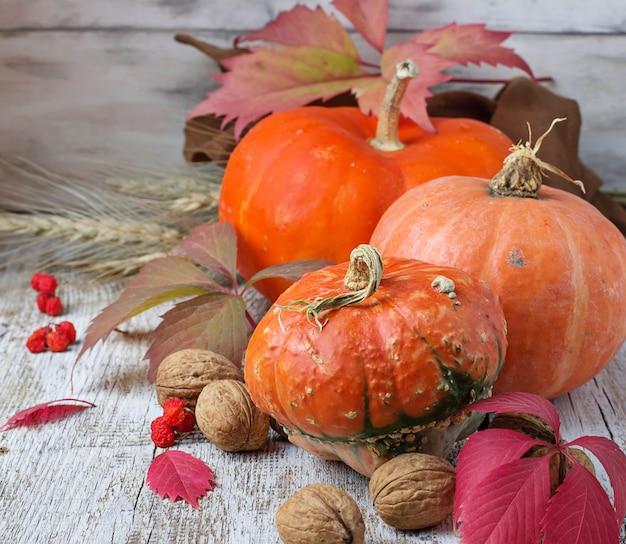 Composición de otoño con calabaza