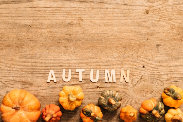 Composición de otoño con calabazas