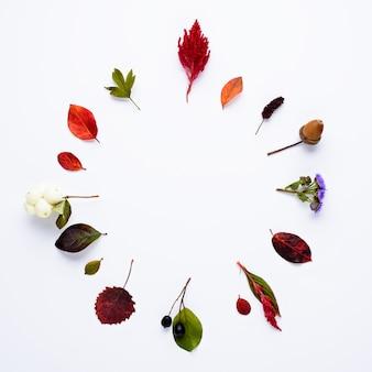Composición de otoño. corona de flores secas, hojas verdes y amarillas caídas, bayas y bellotas
