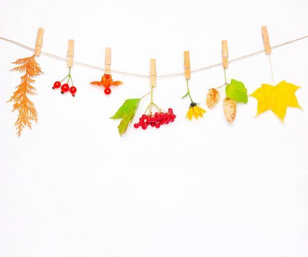 Composición de otoño hecha de flores, hojas de arce, bayas, escaramujos, viburnum rojo, conos de lúpulo y physalis.
