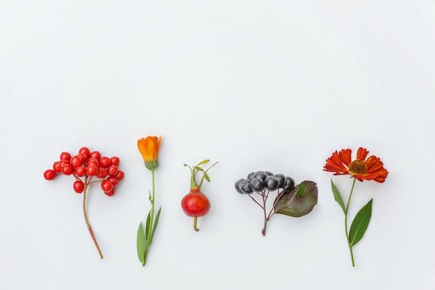 Composición de otoño hecha de plantas de otoño viburnum, chokeberry rowan berries, dogrose, hojas y flores.