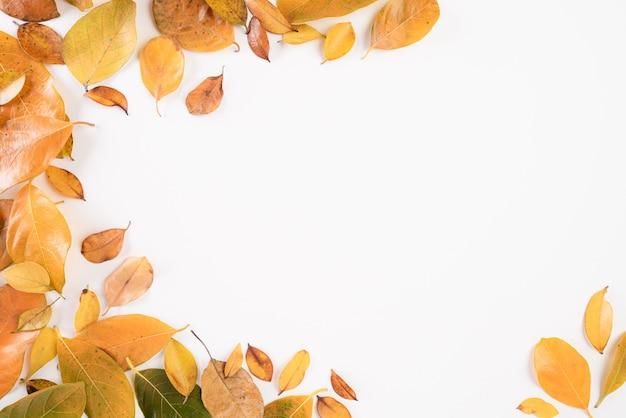 Composición de otoño. hojas de otoño en blanco endecha plana.