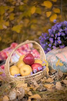 Composición de otoño: manzanas, calabazas y una canasta con flores.