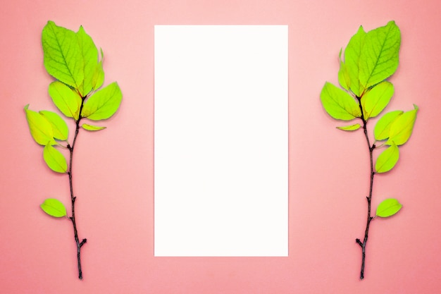 Composición de otoño, marco, papel en blanco. dos ramas con hojas de color verde claro, ciruela, sobre un fondo rosa claro. endecha plana, vista superior, copyspace