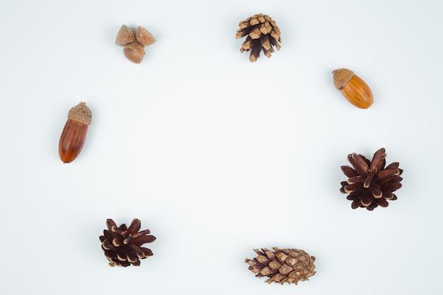 Composición de otoño, marco de piñas, bellotas y castañas. vista plana, vista superior.