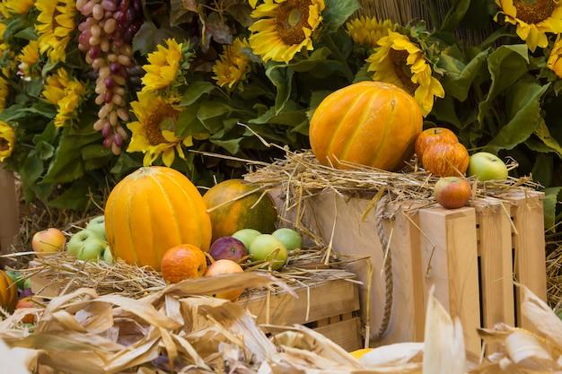 Composición de otoño con melón dulce, girasoles y manzanas.