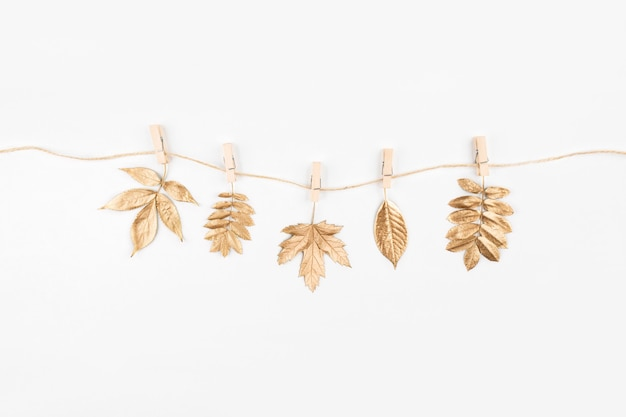 Composición de otoño. otoño hojas doradas sobre fondo blanco. endecha plana, vista superior, espacio de copia