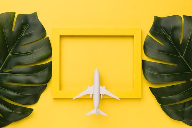 Composición del pequeño avión en marco amarillo y hojas de la planta.