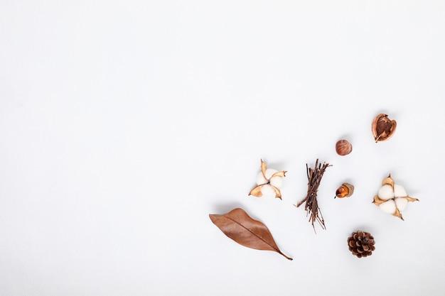 Composición plana de otoño con conos y hojas.