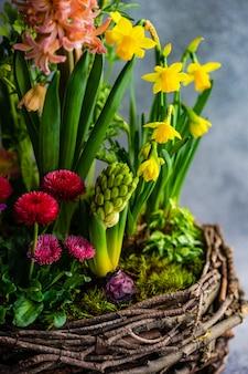 Composición de primavera interior de nido con flores en maceta